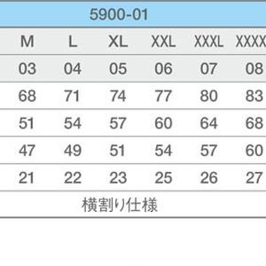 ★自家通販★エイ 速乾ドライTシャツ (ブラック)