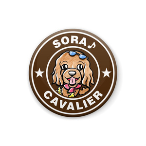 ソラ♪ちゃんのロゴバッジ