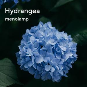 Piano Collection EP8-10: Rain / Hydrangea / Breeze