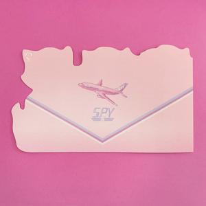 S.P.Y airline ダイカットカード