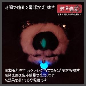 骸骨猫又 / ブルー