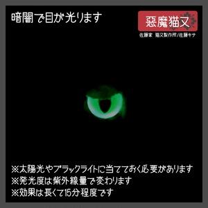 悪魔猫又 / シアン