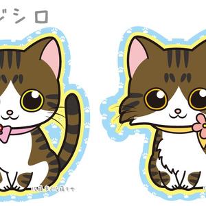 にゃんこステッカー/キジ系