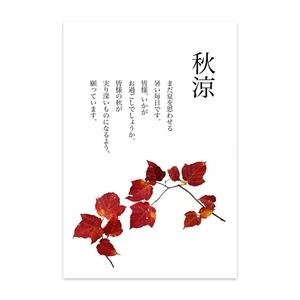 紅葉・ハガキ印刷用切り抜き素材・透過PNG-123