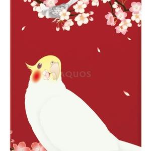 【ぽぷり様オーダー品】オカメインコ クリアケース/AQUOS sense2 SH-M08【花桜】