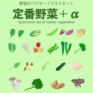 野菜セット - 定番野菜編プラス全20種 - 定番野菜+α編