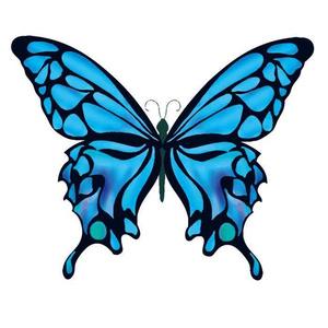 綺麗な蝶々のベクターイラスト