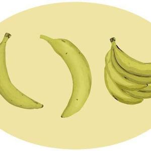 バナナのベクターイラスト素材