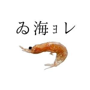 怪レい日本语缶バッジ。