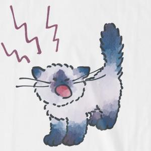 泣く赤ちゃんネコのTシャツ