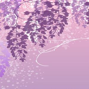 開く蕾の華の色