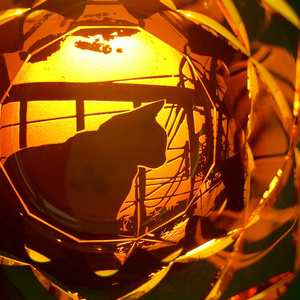 夕焼け猫+七宝紋/切子(黒瑠璃) ※木箱付き※【所さんのニッポンの出番!紹介】