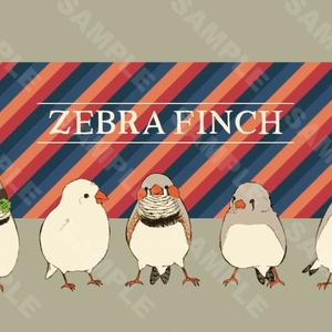 ZEBRA FINCH ポストカード