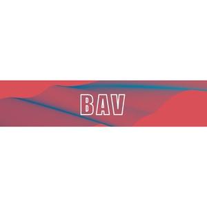BAV TWO-MAN 醉 マフラータオル
