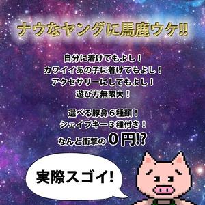 3Dモデル「豚の鼻」