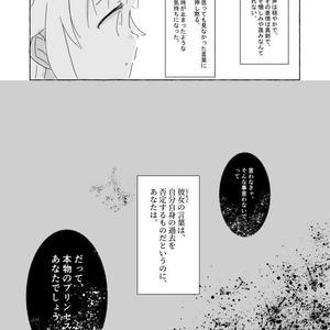 【PDF版】わたしのほしのおひめさま