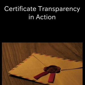 Certificate Transparency in Action