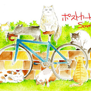 ポストカード「猫とロードバイク」