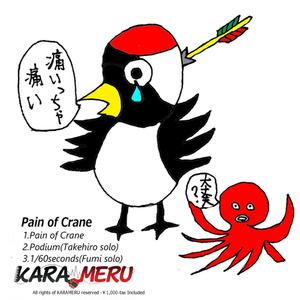 Pain of Crane