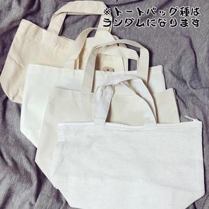 ツートップトート(6月/梅雨)