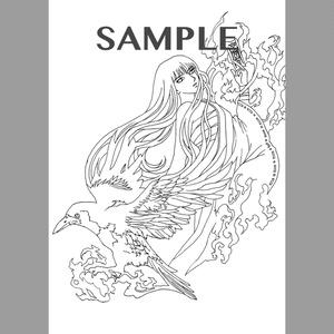 COAMARUJU B ダウンロード版
