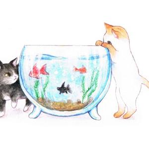 金魚と猫ポストカード