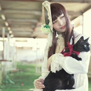 お嬢さんと黒猫又物語