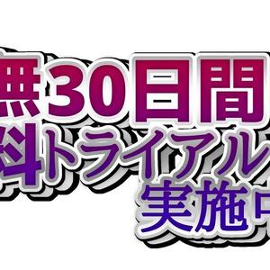 ロゴTシャツ(30日間無料トライアル)