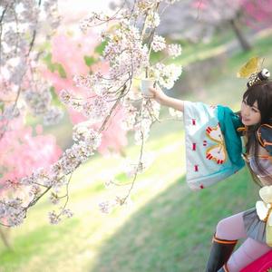 【お花見】信貴山城