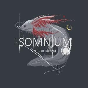 SOMNIUM【20P・A5フルカラー】