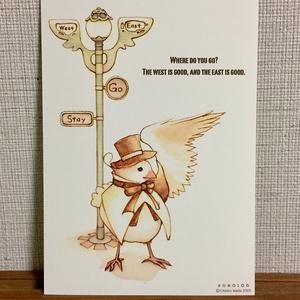ポストカード Aセット(ボッカ=グレース)