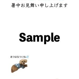 トイプードル「はなちん」のポストカード【アルバム制作応援】