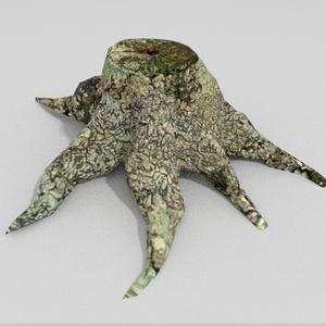 3Dモデル「苔た切り株」