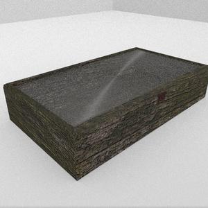 3Dモデル「苔木の展示箱」