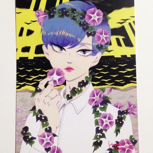 ハマヒルガオ少年のポストカード(単品)
