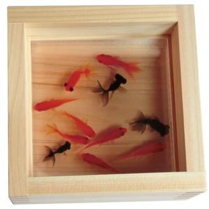 樹脂金魚 3D金魚 「祭」 プレゼント 長寿 商売繁盛 開運 還暦 結婚 金運上【こだわりと安心の純日本製】