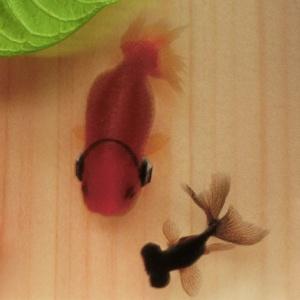 金魚 ひのきアート 楽 プレゼント 日本製 桧 還暦祝い 誕生日 結婚 男性 女性 ハート クリスマス お正月