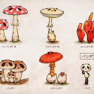 ポストカード『パンダケ図鑑』