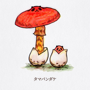 ポストカード『タマパンダケ』