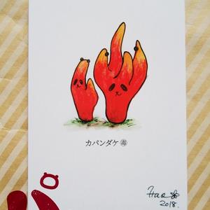 ポストカード『カパンダケ』