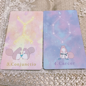 ぽちゃリスのジオマンシーカード