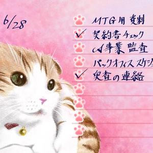 にゃんこクロス巻きメモ帳