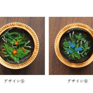 水中の植物の絵⑤
