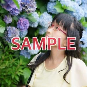 【☆ダウンロード写真】紫陽花とじゅうななちゃん♪