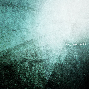 Angraecum EP (Download)