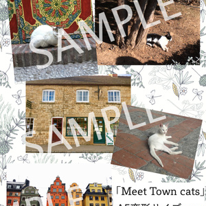 「Meet Town cats」Town cats Photo book