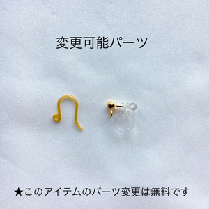メダイ&タッセルピアス/ Medal & Tassel earring