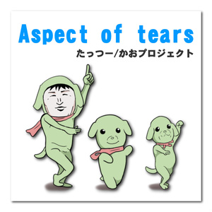 【楽曲】Aspect of tears