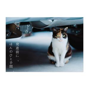 猫バンバン布教用ポスター【発進前に、ほんのひと手間。】