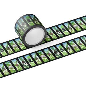 マスキングテープ幅30mm(マダラガの仲間)
